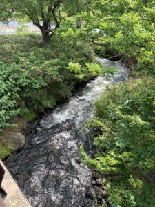 広瀬川に流れ込む